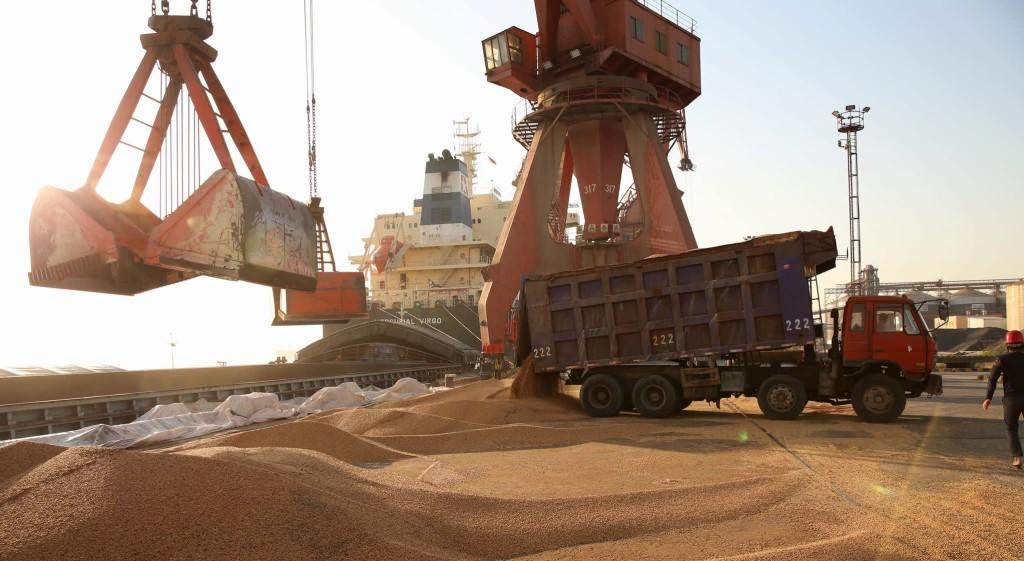La guerra comercial entre China y Estados Unidos viene afectando las importaciones de soya del país asiático. Uno de los pocos países que pueden suplir esta gran demanda es Brasil, pero esto podría ocasionar la deforestación de los bosques amazónicos.