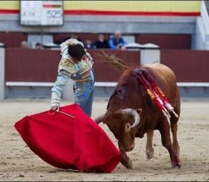 FOTO: PÁG WEB PLAZA DE TOROS DE LAS VENTAS DRECHAZO. Por momentos, pudo instrumentar buenos derechazos a su primer novillo.