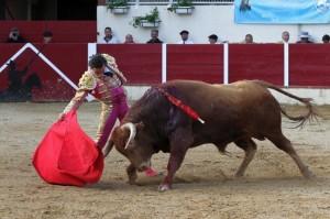 FOTO: BRUNO LASNIER SERIO ASTADO. La novillada que mató ayer Joaquín Galdós fue seria y complicada; parecían toros para una plaza de primera.