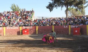 FOTO: PABLO JAVIER GÓMEZ DEBARBIERI LANCE. Verónica de Alfonso de Lima al tercer toro de la corrida.