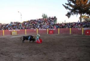 FOTO: PABLO JAVIER GÓMEZ DEBARBIERI INDULTO. El sexto de la corrida, buen toro de J.B. Caicedo, fue indultado por Alfonso de Lima.