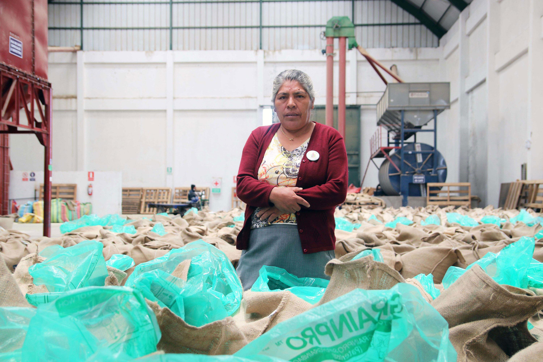 Reina Mamani: liderazgo femenino en el café de Puno