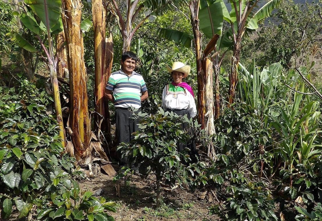 Paula Chávez: Líder indígena de Café Femenino