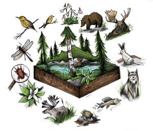 La biotecnología y su aporte a la conservación de la biodiversidad